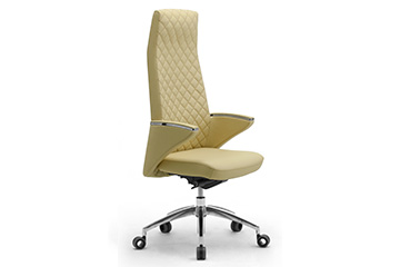 design office seating and executive chairs zeus Zeus